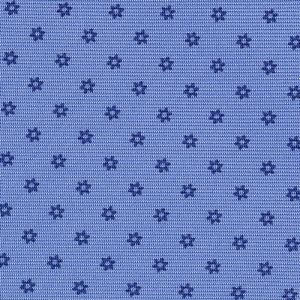 Dark Blue on Sky Blue Macclesfield Print Silk Tie #248