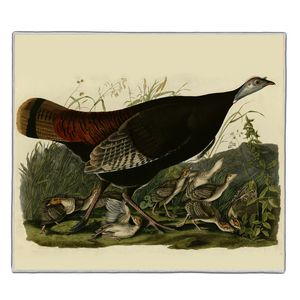 Wild Turkey - Audubon Pocket Rectangle #ARTR-32B