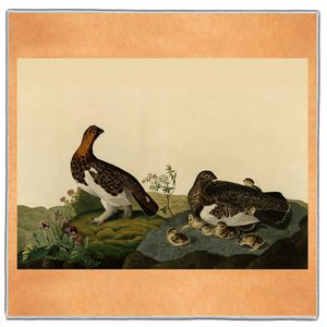 Willow Grouse - Audubon Pocket Square #ARTP-34A