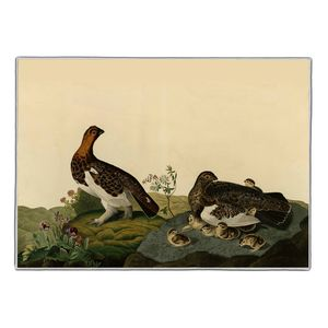 Willow Grouse - Audubon Pocket Rectangle #ARTR-34B