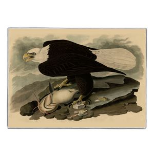 White Headed Eagle - Audubon Pocket Rectangle #ARTR-35B