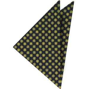 Macclesfield Printed Silk Pocket Square #65
