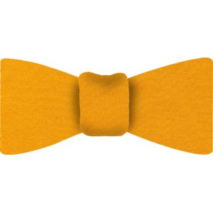 Yellow Gold Satin Silk Bow Tie #17