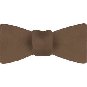 Brown Shot Thai Silk Bow Tie #33