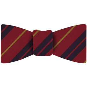 Atkinsons Stripe Irish Poplin Tie Bow Tie #51