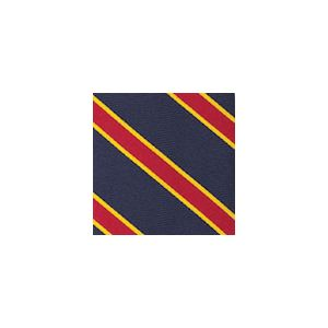 University Of Southern California Pocket Square #47