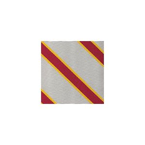 University Of Southern California Pocket Square #48