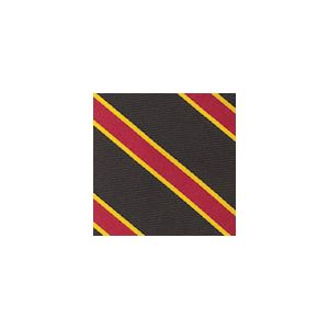 University Of Southern California Pocket Square #50