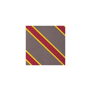University Of Southern California Pocket Square #52