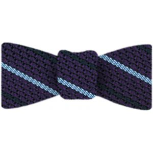 Sky Blue And Midnight Blue On Purple Grenadine Grossa Stripe Silk Bow Tie #11