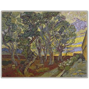 Van Gogh The Garden Bench at Saint Paul's Hospital 1889 Rectangle #4B