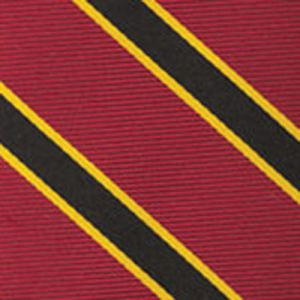 University Of Southern California Pocket Square #ECOP-49