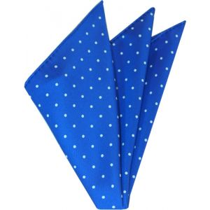 White On Royal Blue Printed Dot Silk Tie #5