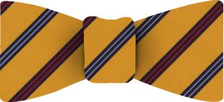 Atkinsons Stripe Irish Poplin Tie #49Atkinsons Stripe Irish Poplin Tie Bow Tie #49