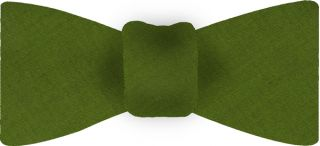 Young Leaf Green Thai Shot Silk Bow Tie #75