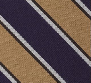 Assam Valley Light Horse Strip Silk Pocket Square #35
