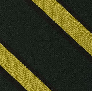 2nd Argyle and Sutherland Highlanders Silk Pocket Square #RGP-48B