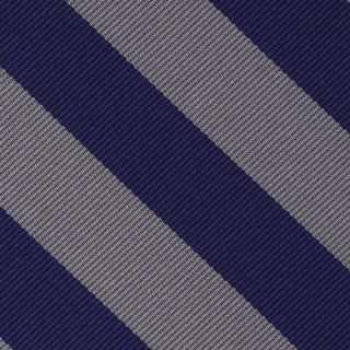 Georgetown Silk Pocket Square #ECOP-6