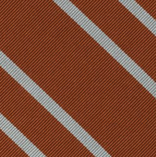 The Longhorn Silk Pocket Square #ECOP-1