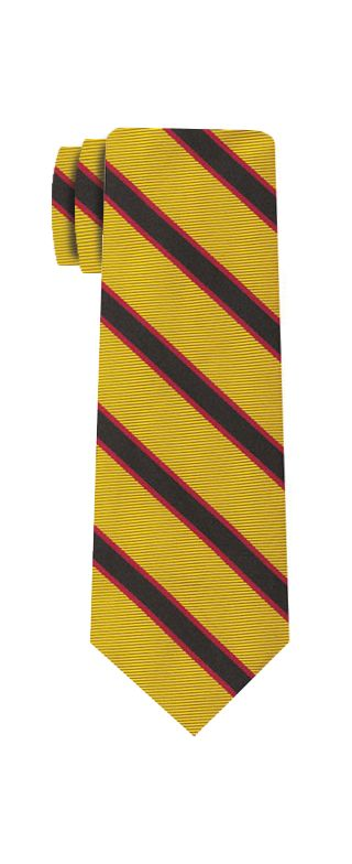 University Of Southern California Tie #51